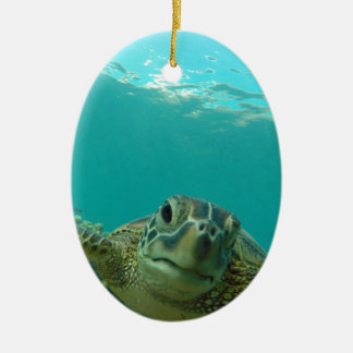 Green Sea Turtle Ceramic Ornament
