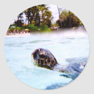 Green Sea Turtle Classic Round Sticker