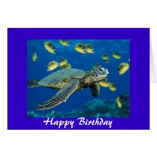 Ninja Turtles Birthday Invitation for amazing invitations ideas