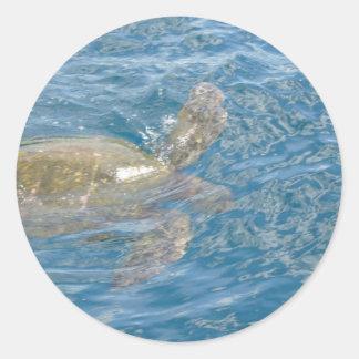 Green Sea Turtle - Hawaii Honu Classic Round Sticker