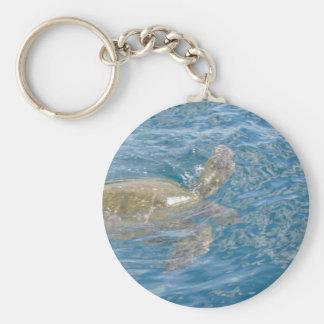 Green Sea Turtle - Hawaii Honu Keychain