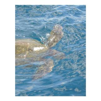 Green Sea Turtle - Hawaii Honu Letterhead