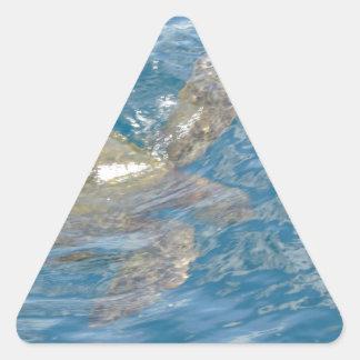 Green Sea Turtle - Hawaii Honu Triangle Sticker