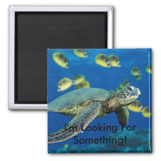 Green Sea Turtle, I'm Looking For Something! Magnet