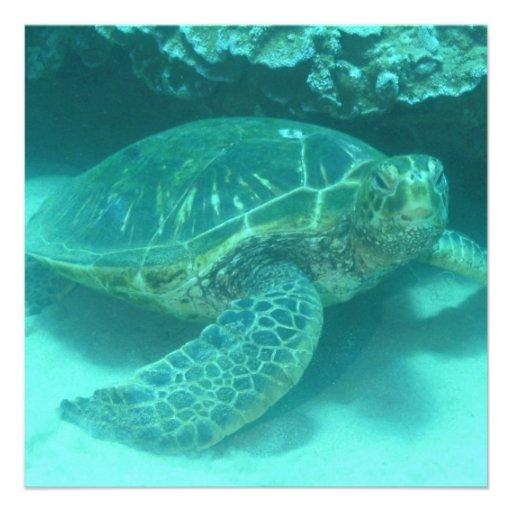 Green Sea Turtle Custom Invitations