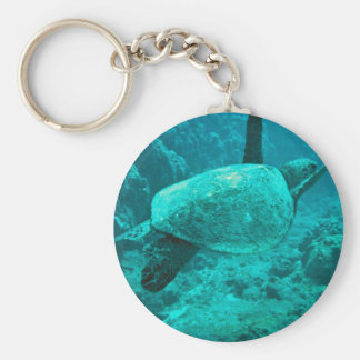 Green Sea Turtle Keychains