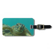 Green Sea Turtle Luggage Tag