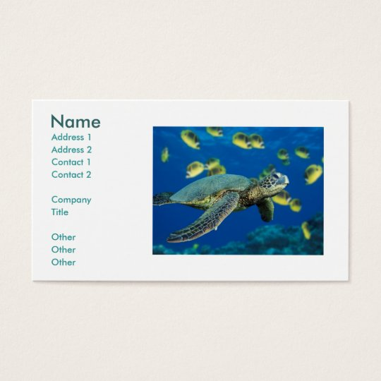 Green Sea Turtle, Name, Address 1, Address 2, C... Business Card