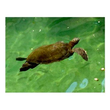Hawaiian Themed Green Sea Turtle Postcard