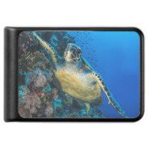 Green Sea Turtle | Red Sea Power Bank