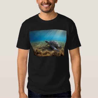 Green sea turtle relaxing underwater t shirts