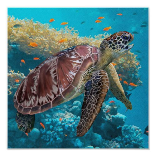 Green Sea Turtle Swimming Near Coral Reef Poster