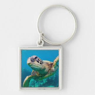 Green Sea Turtle Swimming Over Coral Reef |Hawaii Keychain