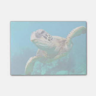 Green Sea Turtle Swimming Over Coral Reef |Hawaii Post-it® Notes