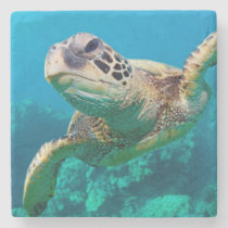 Green Sea Turtle Swimming Over Coral Reef |Hawaii Stone Coaster