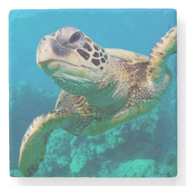 welcomeaboard Green Sea Turtle Swimming Over Coral Reef |Hawaii Stone Coaster