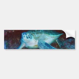 Green Sea Turtle Underwater Bumper Sticker