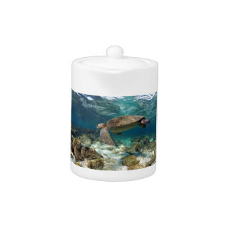 Green Sea Turtle Underwater Galapagos Islands Teapot at Zazzle