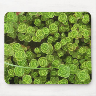 Green Sedum Mousepad 2