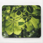 Green Seven Point Leaves with Sun Illumination Mousepad