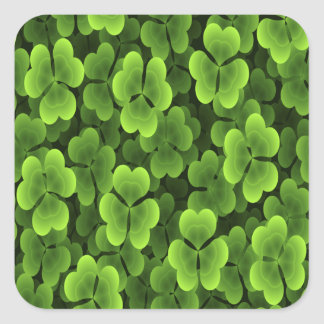 Green Shamrock Plant Pattern Square Sticker