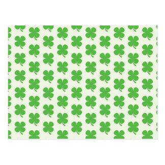 Green Shamrocks Postcard