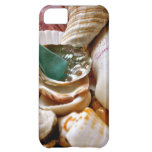 Green Shard iPhone 5C Cases