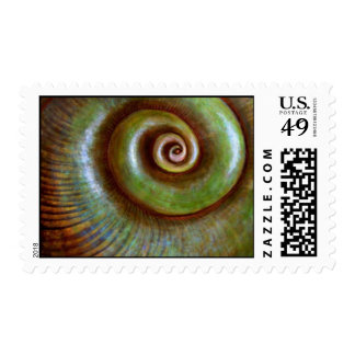 Green Shell Postage