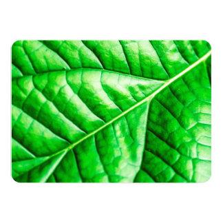 Green Shiny Glossy Leaf Macro Close Up Invitation
