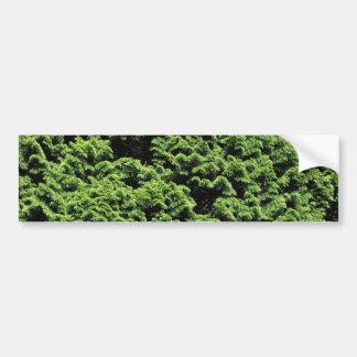 Green Shrubbery Bumper Sticker