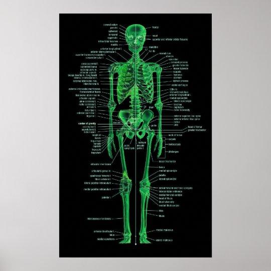 green skeleton poster