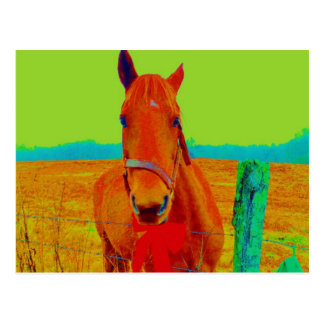 Green sky , red bow Horse : add name Postcard