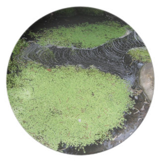 Green Slime Pond Plate