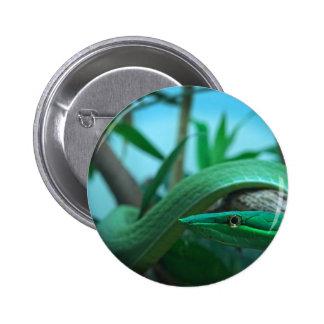 Green Snake Eye Button