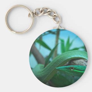 Green Snake Eye Keychain