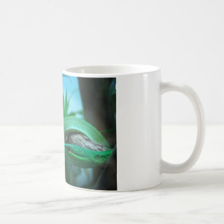 Green Snake Eye Mug