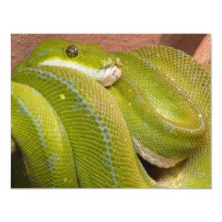 green snake 4.25x5.5 paper invitation card