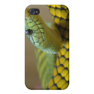 Green Snake iPhone 4/4S Case