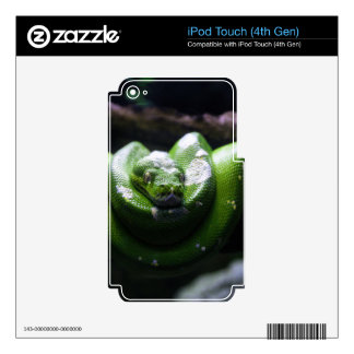 Green snake iPod touch 4G decal