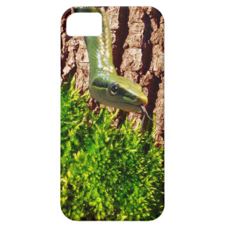 Green Snake on Tree Bark Reptile Wildlife Design iPhone SE/5/5s Case