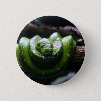 Green snake pinback button