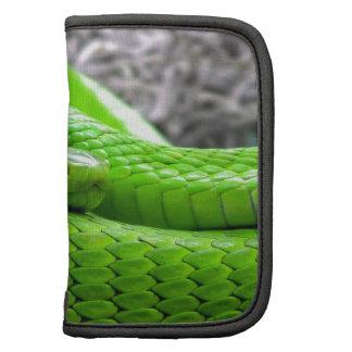 Green Snake Folio Planner