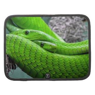 Green Snake Folio Planners