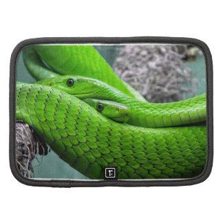Green Snake Planner