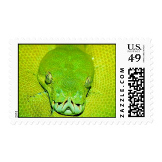 green snake postage