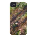 Green Space iPhone 4 Case-Mate Case