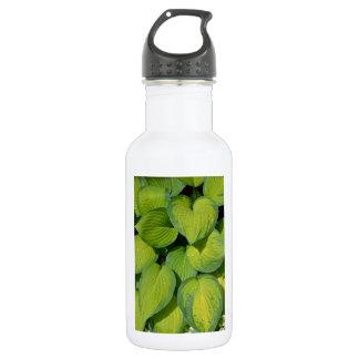 Green spring hosta plant leaves 18oz water bottle