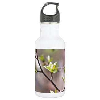 Green Spring Leaves on Gray Brown 18oz Water Bottle