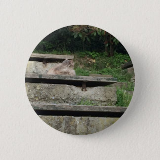 Green stairs pinback button