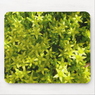 green star like flowers herbal plant mouse pad